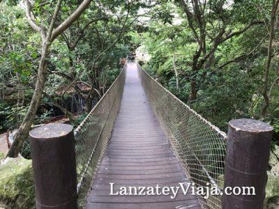 Puente en el Mariposario